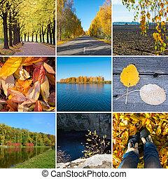 Collage on the theme of autumn.