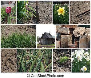 collage, primavera, lavoro