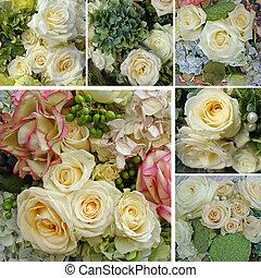 collage, róża