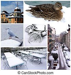 collage, suisse, hiver, genève