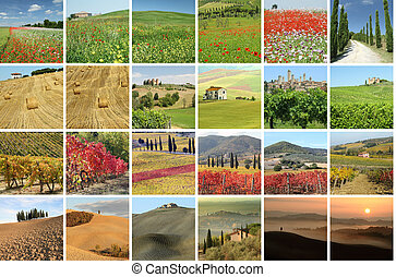 collage with fantastic landscape of Tuscany, Italy, Europe