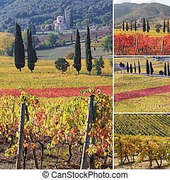collage with fantastic landscape of tuscan vineyards