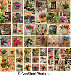 collage with flowerpots