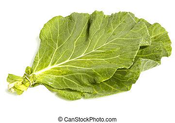 Collard Greens - Vegetable collard greens over white...