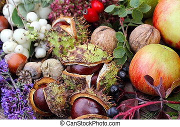 Collected autumn fruits