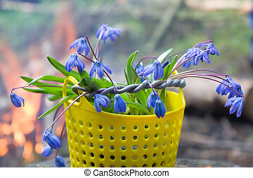 Collected in the basket the first flowers of spring