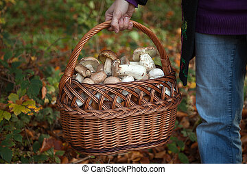 A woman is holding a basket full of edible mushrooms