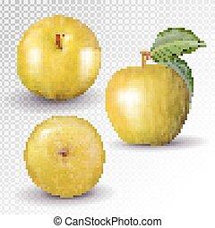 collection., żółty liść, jabłko, 3d, komplet, owoce, white., wektor, odizolowany