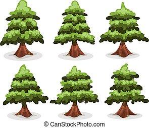 collection, arbres, sapins, pin