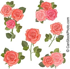 collection bouquets of roses for your design.