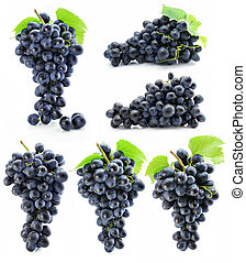 collection cluster of blue grape isolated on white...