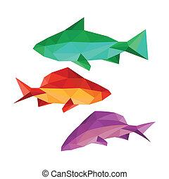 collection, de, différent, fish
