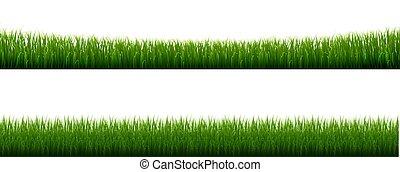 Collection Grass Border Transparent Background