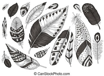 Collection hand drawn feathers