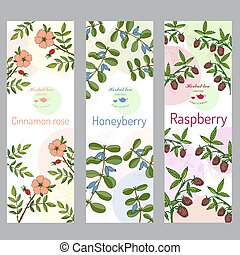 collection., honeyberry, set., バラ, ラズベリー, シナモン, お茶, 草, 旗