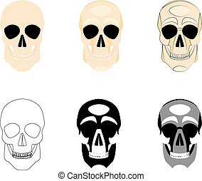 Collection icons human skulls logo in various styles, silhouette, line, color, simple, monochrome