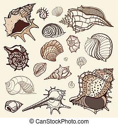 collection., illustrazione, mano, vettore, mare, disegnato