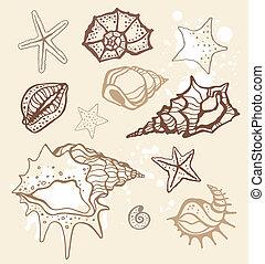 collection., ilustração, mão, vetorial, mar, desenhado