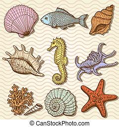 collection., ilustración, mano, mar, dibujado, original