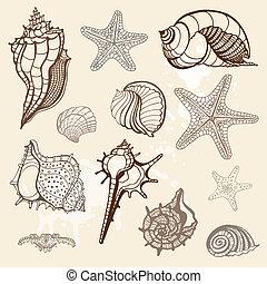 collection., ilustracja, ręka, wektor, morze, pociągnięty
