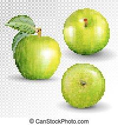 collection., jabłko, 3d, owoc, komplet, zielony, white., wektor, realistyczny, odizolowany