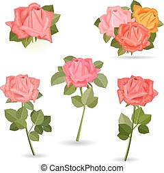 collection lovely of roses for your design.
