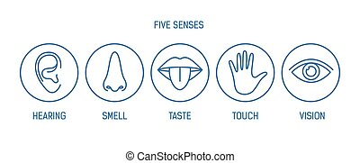 Collection of 5 senses - hearing, smell, taste, touch,...