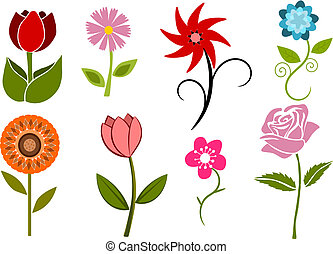 Collection of 8 flowers