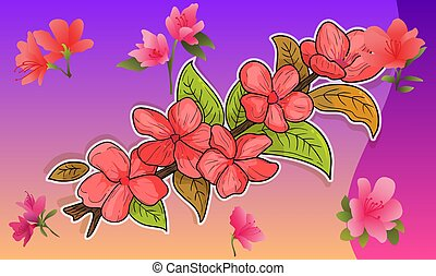 collection of abstract flower on natural light background