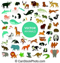 Collection of Animals of the World