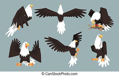 Collection of Bald Eagles in Various Poses, Pride and Power Predatory Bird Vector Illustration