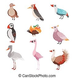 Collection of beautiful birds, flamingo, puffin, waxwing, cardinal, bright, crane vector Illustration