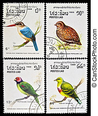 LAOS - circa 1988:stamps collection features a Stork-billed kingfisher bird (pelargopsis capensis), a Japanese Quail bird (Coturnix japonica), a Blossom-headed Parakeet bird (Psittacula roseata), and an Orange-breasted Green Pigeon (Treron Bicincta), circa 1988 in the Lao People's Democratic ...