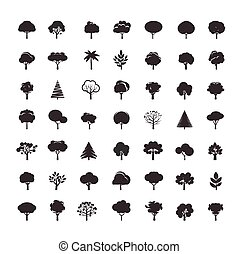Collection of Black Trees.