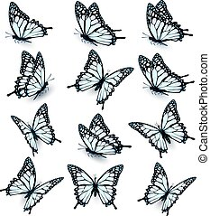 Collection of blue butterflies, flying in different directions. Vector.