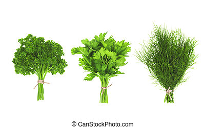 collection of bunches of greens isolated on a white background