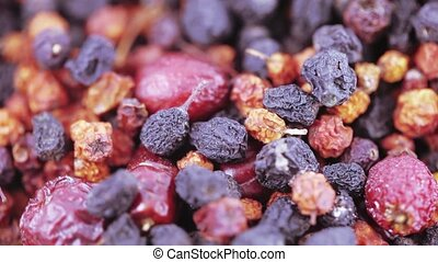 Collection of Carpathian berries - Collection of forest...