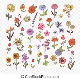 Colored Doodle sketch flowers. Vector illustration