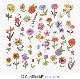 Colored Doodle sketch flowers. Vector illustration