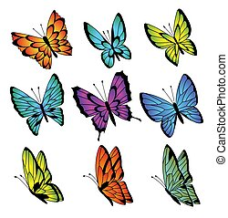 Collection of colorful butterflies. Vector butterfly set.