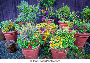 Collection of  colorful flowers and ornamental plants in pots against the wooden wall on a corner of town street,Japan