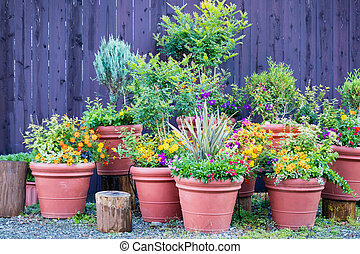 Collection of  colorful flowers and ornamental plants in pots on a corner of town street,Japan