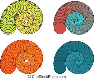 Collection of colorful shells - Set of 4 isolated colorful...