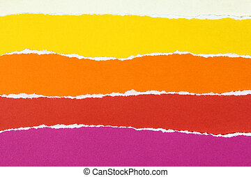 collection of colorful torn paper