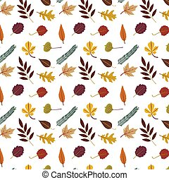 Collection of Colourful autumn leaves pattern isolated on white background