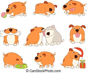 Collection of cute dog