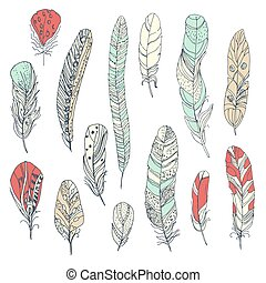 collection of decorative feathers