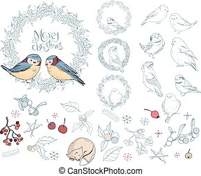 Collection of different winter birds. Christmas forest symbols and elements isolated on white. Vintage style, contour, hand drawn.