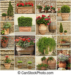 collection of elegant clay retro planters with flowers and plant