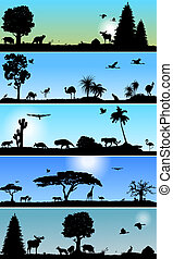 Collection of fauna and flora banners - Collection of Vector...